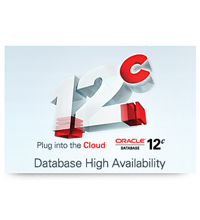 Database High Availabilit